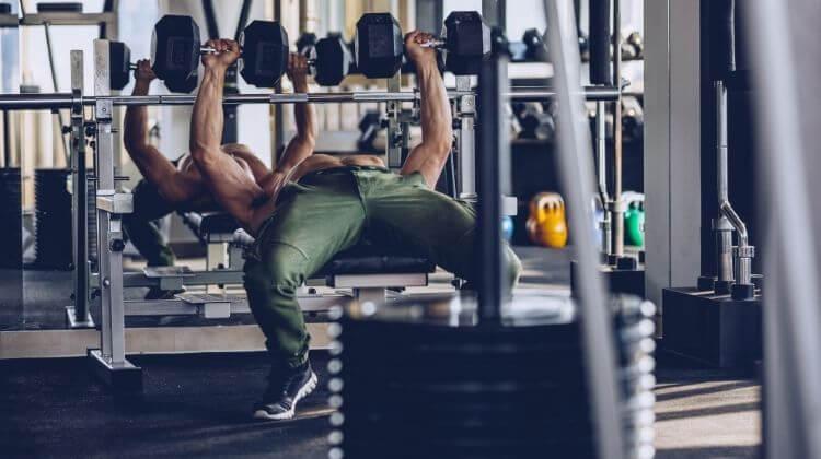 Make a Workout Plan